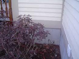 DIY foundation crack repair