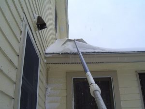 Use a snow rake to remove excess snow from the roof.