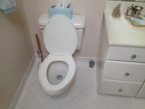 Why Toilets Flushing Slowly and often Incompletely