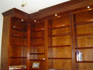 Custom Built in Bookcases and Cabinets