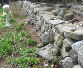 Use a string to ensure building a straight stone wall.