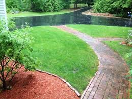 Lawn with Spectracide's Triazicide spread on it.