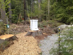 Installing electric bear fence around beehive.