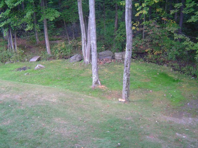 Backyard prior to excavator and landscaping