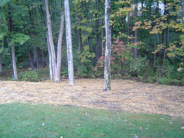 Loam and grass seed covered with straw