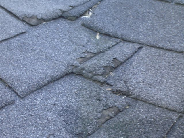 Cupping and curling asphalt roof shingles should be repaired before the roof leaks.